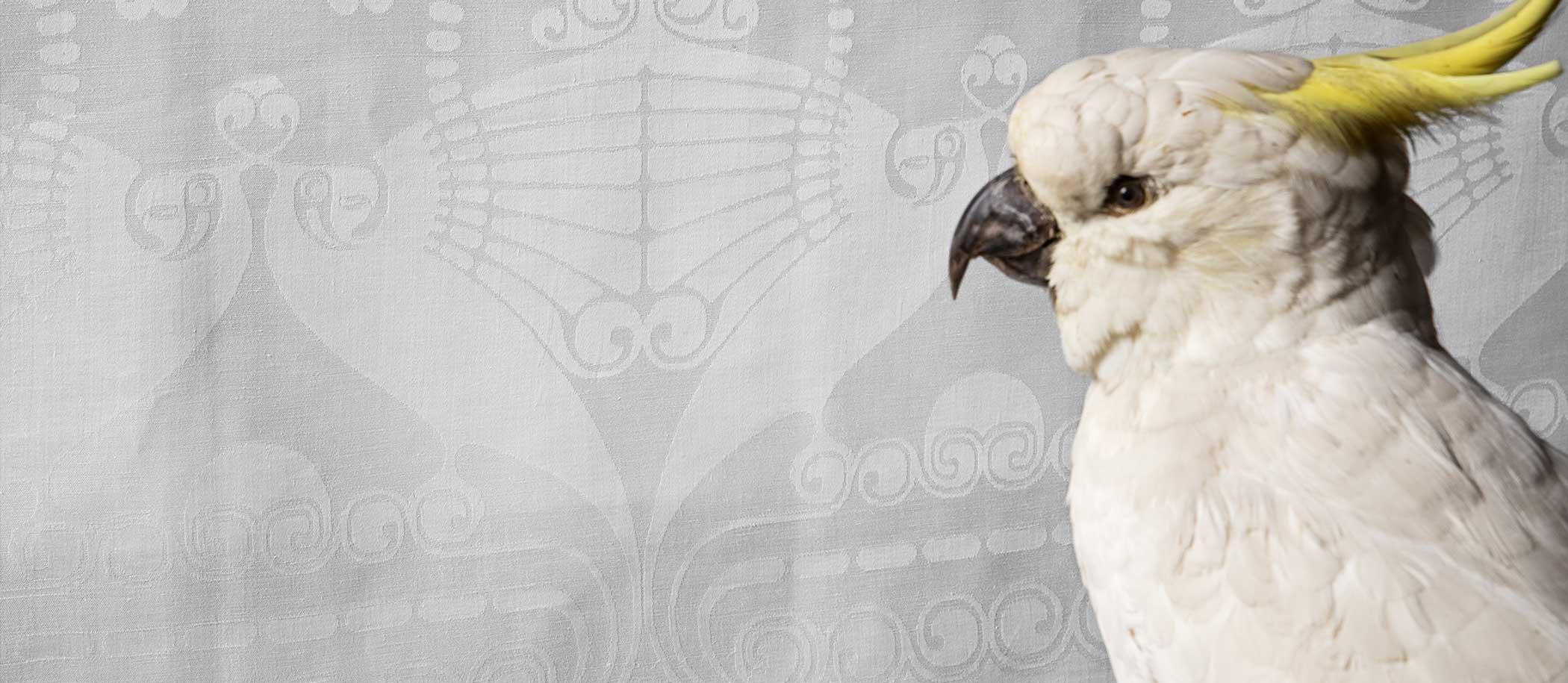 opgezette vogel voor damast met papegaai patroon